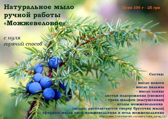 3433000_Kopiya_Kopiya_Mojjevelnik (700x497, 361Kb)