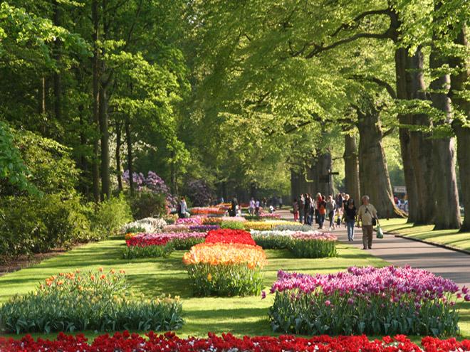 парк (660x495, 221Kb)