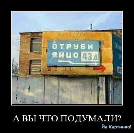 73472784_large_4059800_ogo9 (438x435, 28Kb)