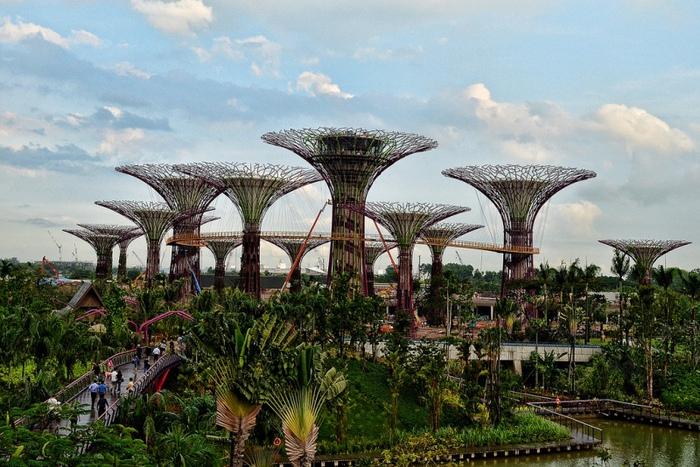 сады в сингапуре фото (700x467, 190Kb)