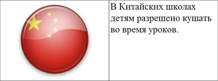 strannye_zakony_20_foto_3 (700x260, 21Kb)