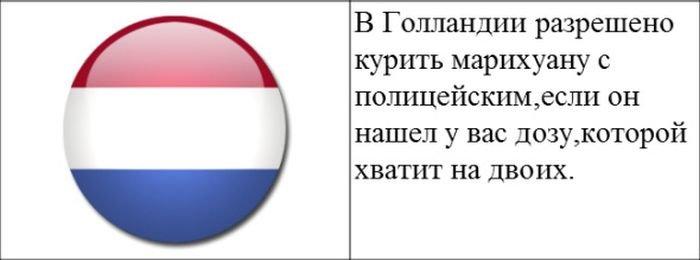 strannye_zakony_20_foto_7 (700x260, 26Kb)