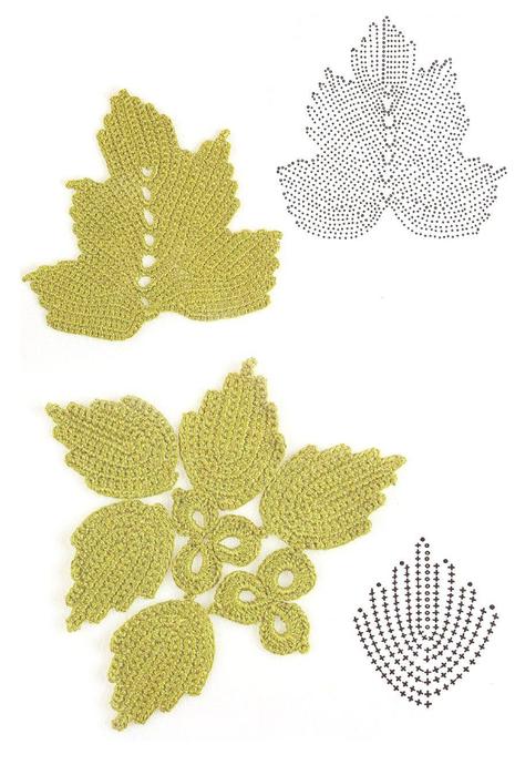 Листья ирландского кружева