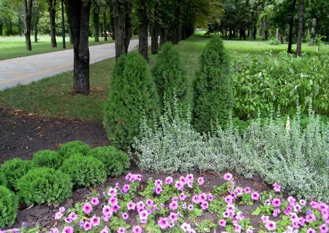 Ботанический сад, г. Краснодар1 (640x453, 77Kb)