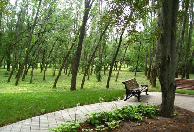 Ботанический сад, г. Краснодар9 (640x434, 72Kb)