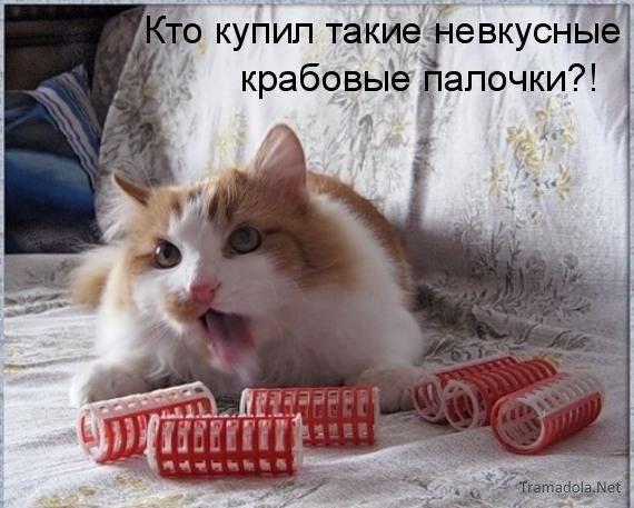 20121406211631 (570x457, 47Kb)