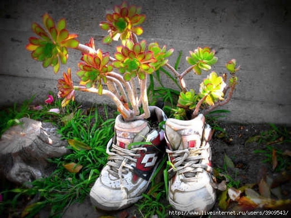 85768413_shoescontainergarden421 (600x450, 192Kb)