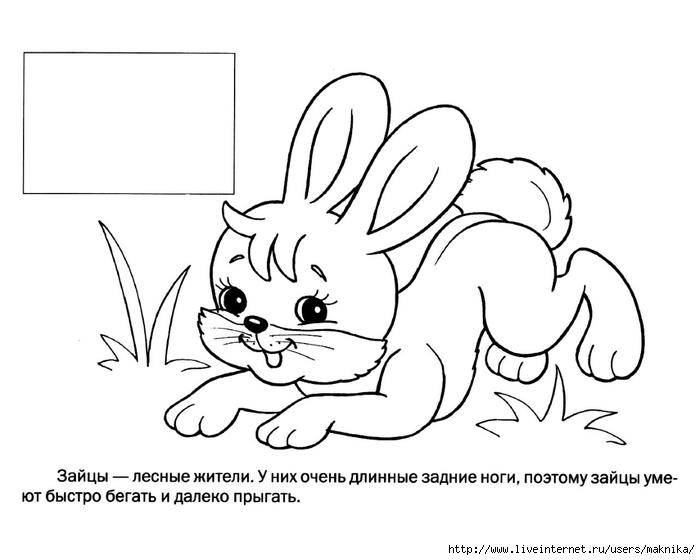 Игра раскраска с животные