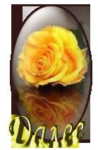 роза - Копие (139x212, 45Kb)