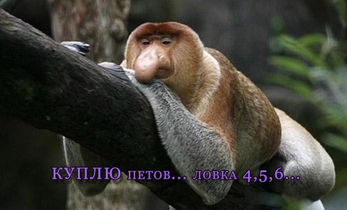 аватарки смайлики: