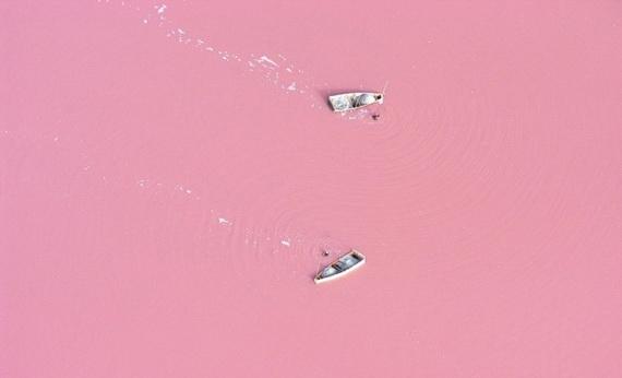 розовое озеро (570x346, 60Kb)