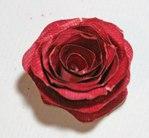 Превью роза10 (500x462, 32Kb)