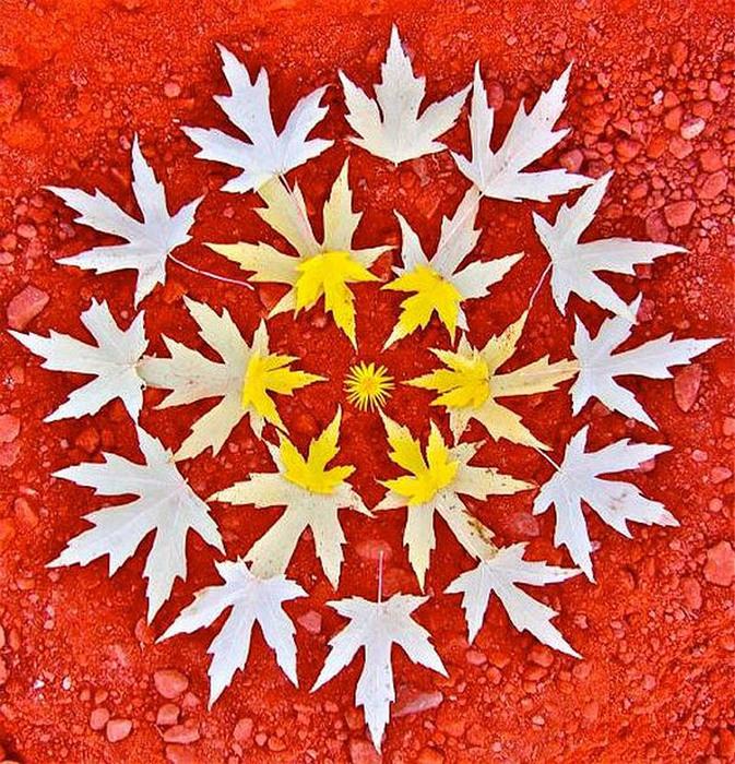 цветочные мандалы фото 9 (673x700, 266Kb)