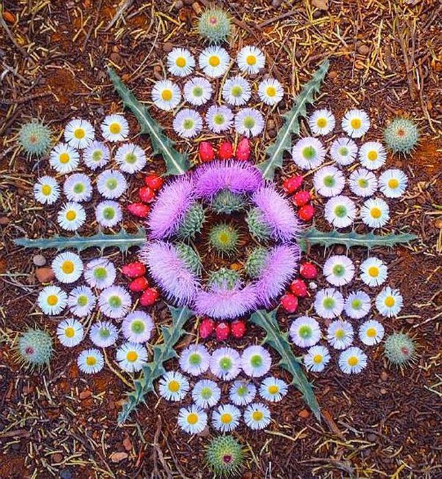 цветочные мандалы фото 22 (645x700, 292Kb)