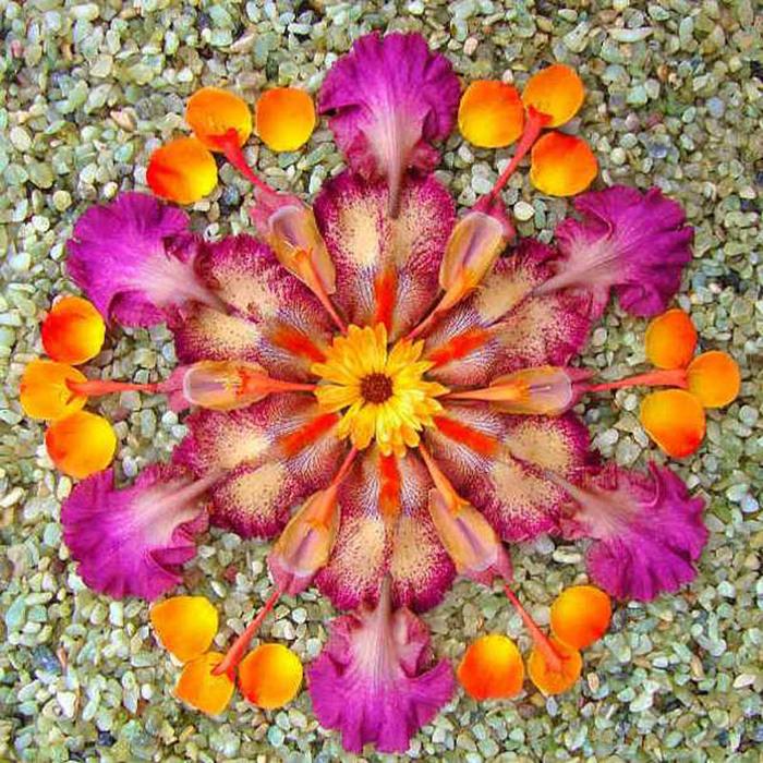 цветочные мандалы фото 34 (700x700, 252Kb)