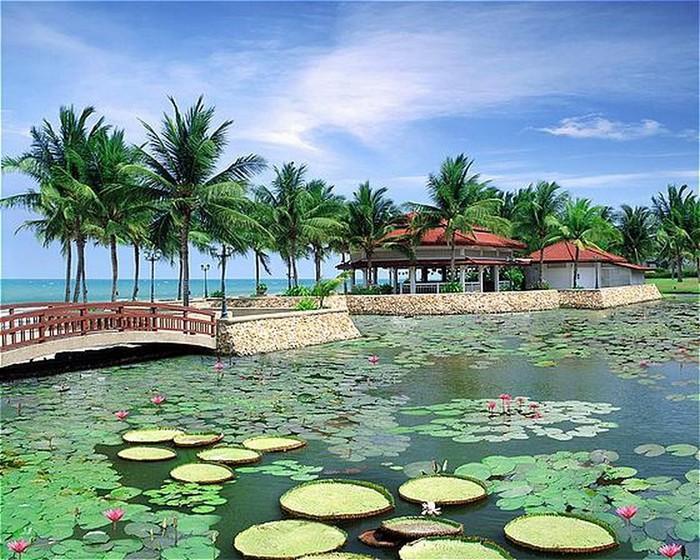 Королевство Таиланд фото и факты 8 (700x560, 155Kb)