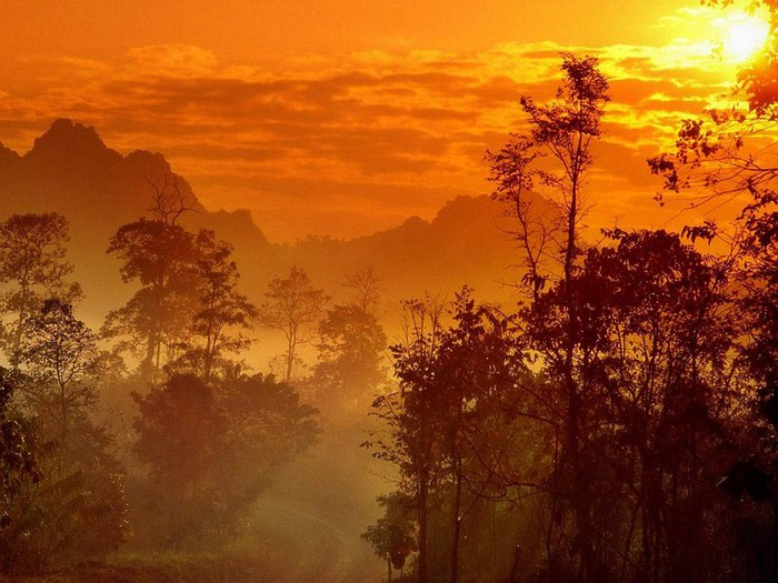 Королевство Таиланд фото и факты 18 (700x525, 112Kb)