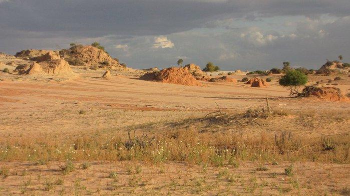 Национальный Парк Манго - Mungo National Park 30870