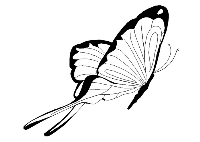 butterfly-coloring-pages-276 (700x495, 67Kb)