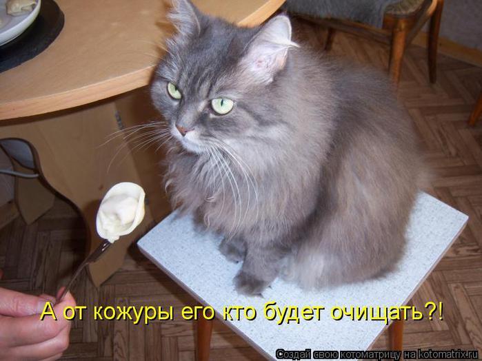 kotomatritsa_DN (700x524, 54Kb)