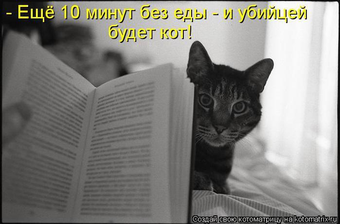 kotomatritsa_H5 (700x461, 40Kb)