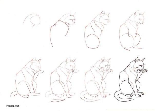 Схемы для рисования для новичков