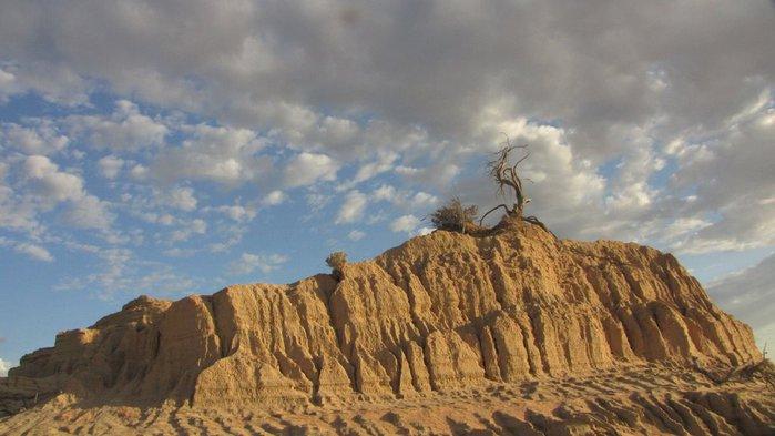 Национальный Парк Манго - Mungo National Park 63106