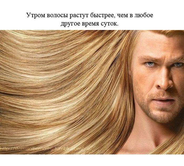 fakty_o_cheloveke_24_foto_6 (700x631, 96Kb)