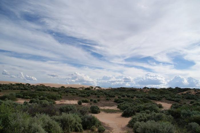 Национальный Парк Манго - Mungo National Park 35439
