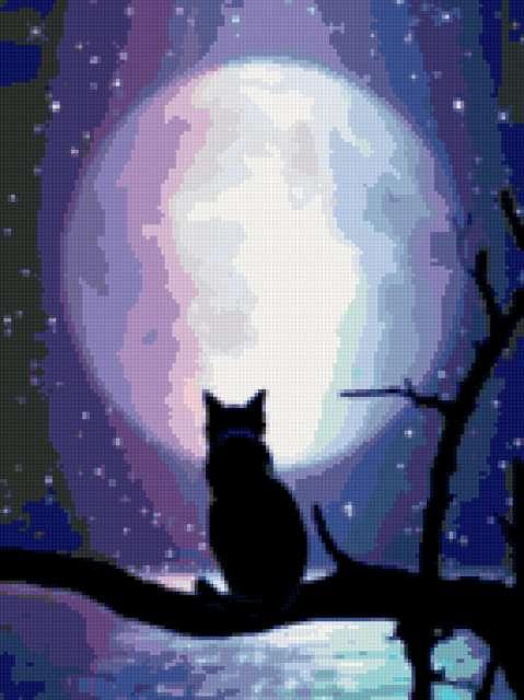 Кот и Луна (479x640, 33Kb)