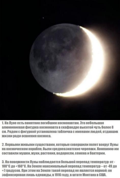 moon_01 (472x700, 137Kb)