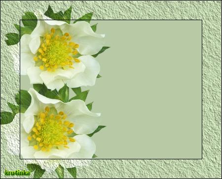 Нежные-цветы (450x364, 238Kb)
