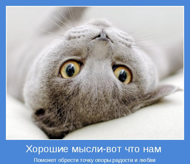 522158_468370713193081_634413303_n[1] (644x557, 53Kb)