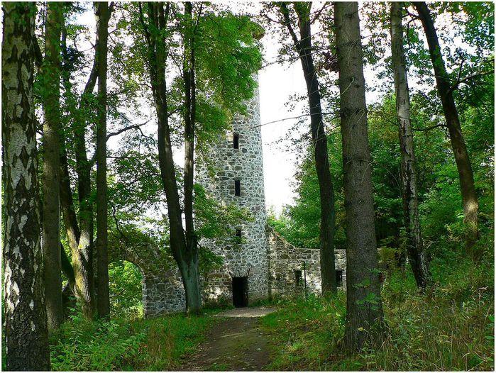 Курорт Марианске Лазне - зелёная жемчужина Чехии. 28639