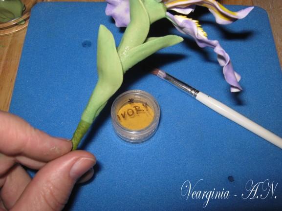 postupt iris , narcis 036_1 (577x433, 67Kb)