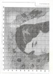 Превью 62 (505x700, 285Kb)