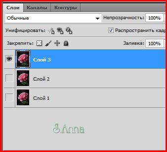 3776505_anim_9 (338x309, 33Kb)