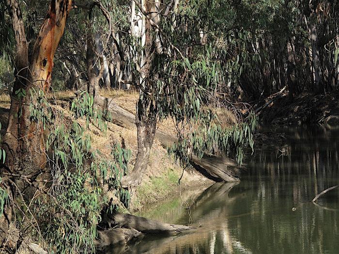 Национальный Парк Манго - Mungo National Park 74971