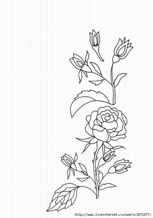 刺绣用图案(二) - maomao - 我随心动