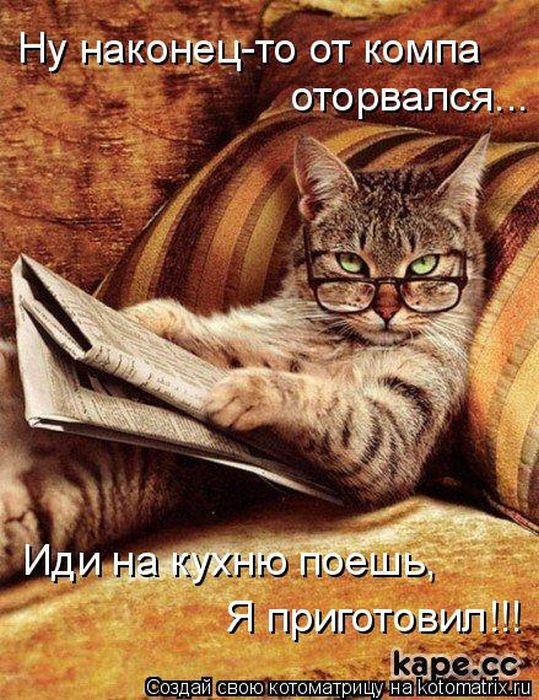 http://img1.liveinternet.ru/images/attach/c/5/89/91/89091699_kotomatrix_01.jpg