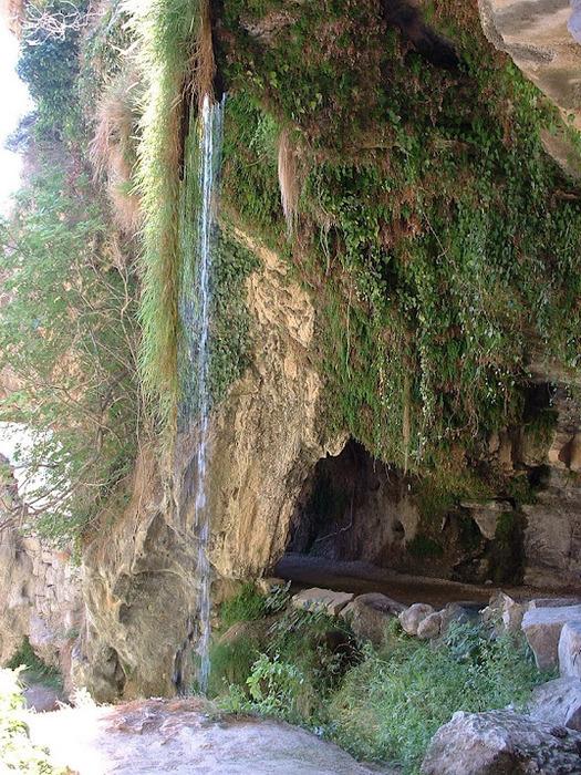 Природный парк Сан Мигель дель Фай. 27301