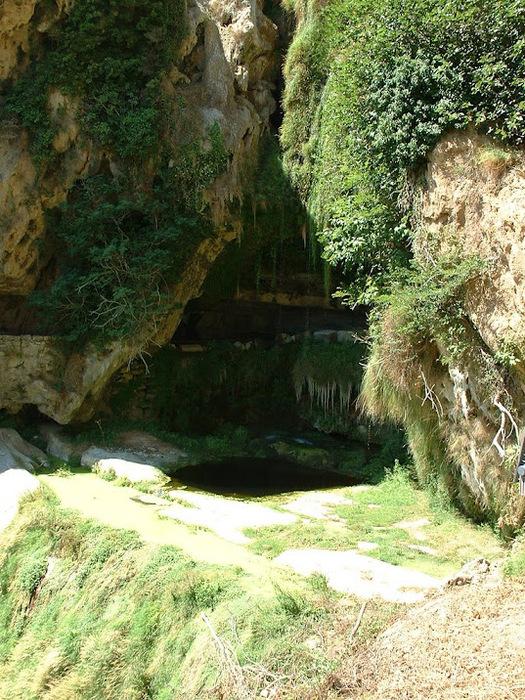 Природный парк Сан Мигель дель Фай. 14136