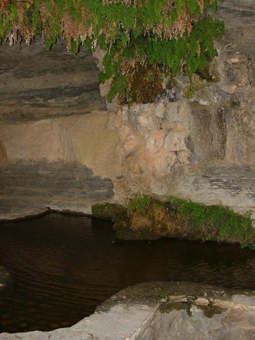 Природный парк Сан Мигель дель Фай. 15783