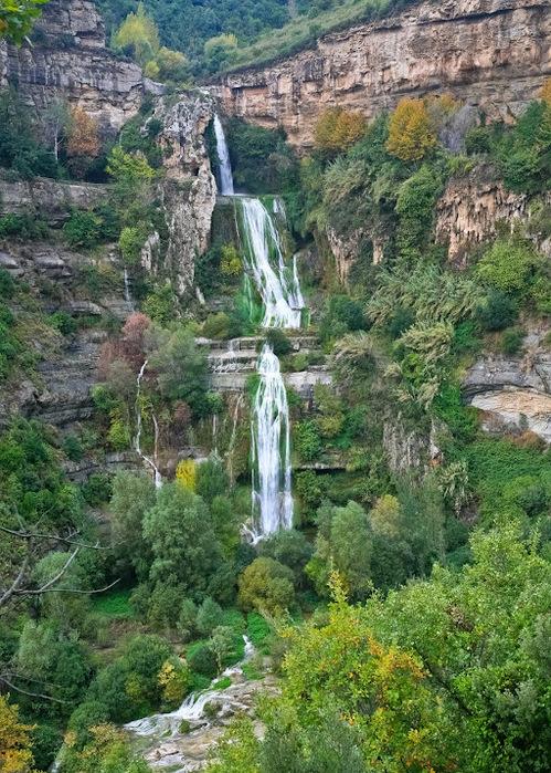 Природный парк Сан Мигель дель Фай. 32499