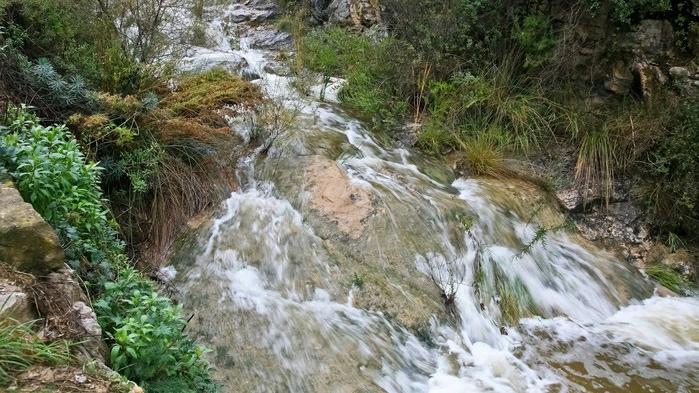 Природный парк Сан Мигель дель Фай. 58957