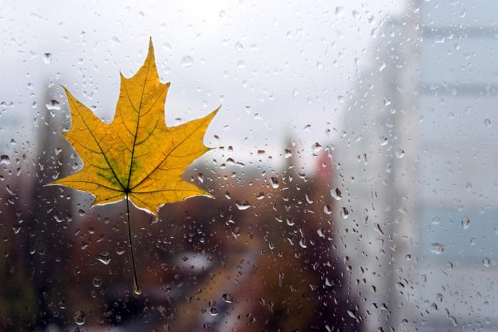 Картинки осень дождь для детей - 08
