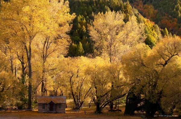 Новая Зеландия - завораживающие пейзажи3 (600x394, 302Kb)