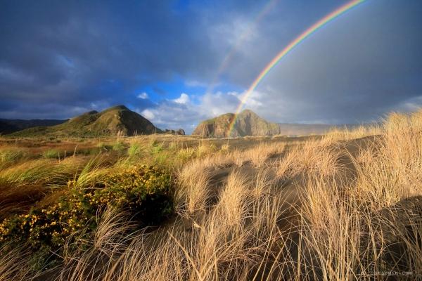 Новая Зеландия - завораживающие пейзажи40 (600x400, 232Kb)