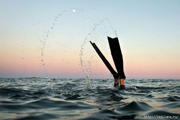 подводная охота0 (604x403, 128Kb)