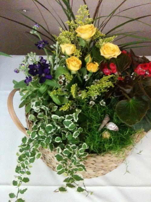 Композиции из цветов в горшках фото